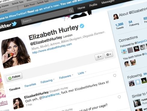 Elizabeth Hurley, Liz Hurley, Shane Warne, Twitter, Seleb Spy 2011, SelebSpy.com